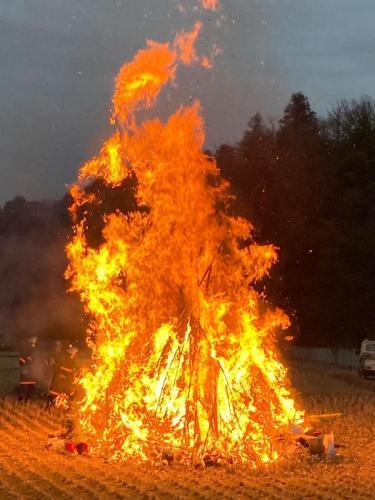 C138 黒川 せいの神~大きな火~ SARA 黒川 セレサモス奥 橋場の田んぼ  2021/01/11