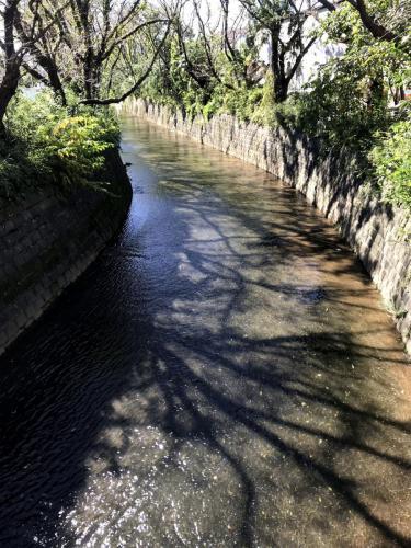 A158 嵐過ぎし跡 勾 麻生川 2019/10/13