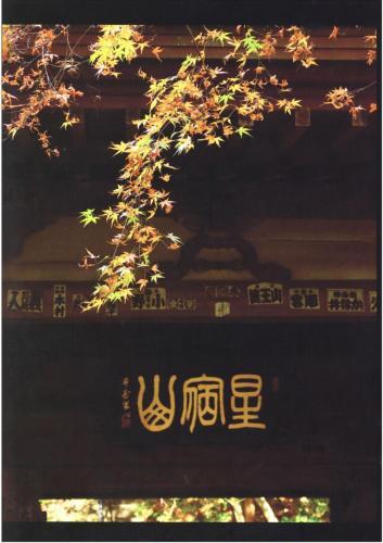 A189 秋の山門 松山 進 王禅寺 2020/11/30