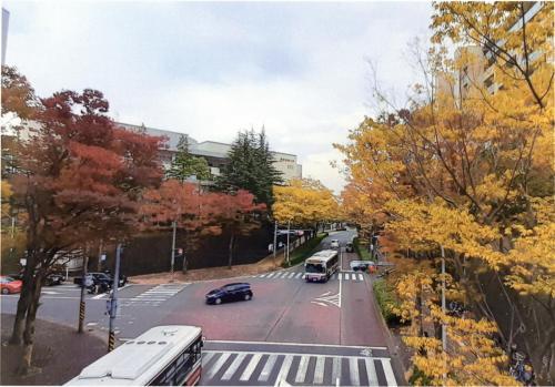 A125 紅葉を感じながらの通勤 林 秀一郎 万福寺王禅寺線 2020/11/07