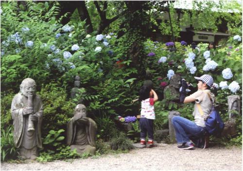 A200 ママ上手に撮って 山田 康元 麻生区 浄慶寺 2020/06/18