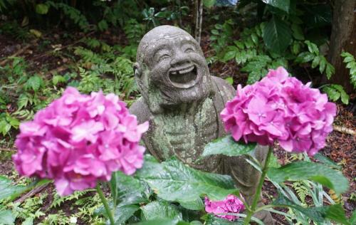 A061 あじさいと笑顔の羅漢像 ピョモ 浄慶寺 2020/06/30