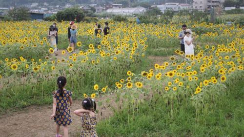 A022 あっちも見ようね 辻村 一男 麻生区早野 2020/08/16